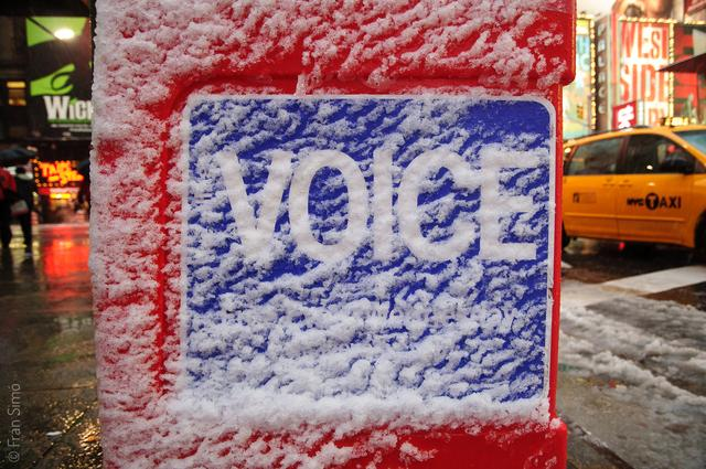 Frozen Voice(#2415)